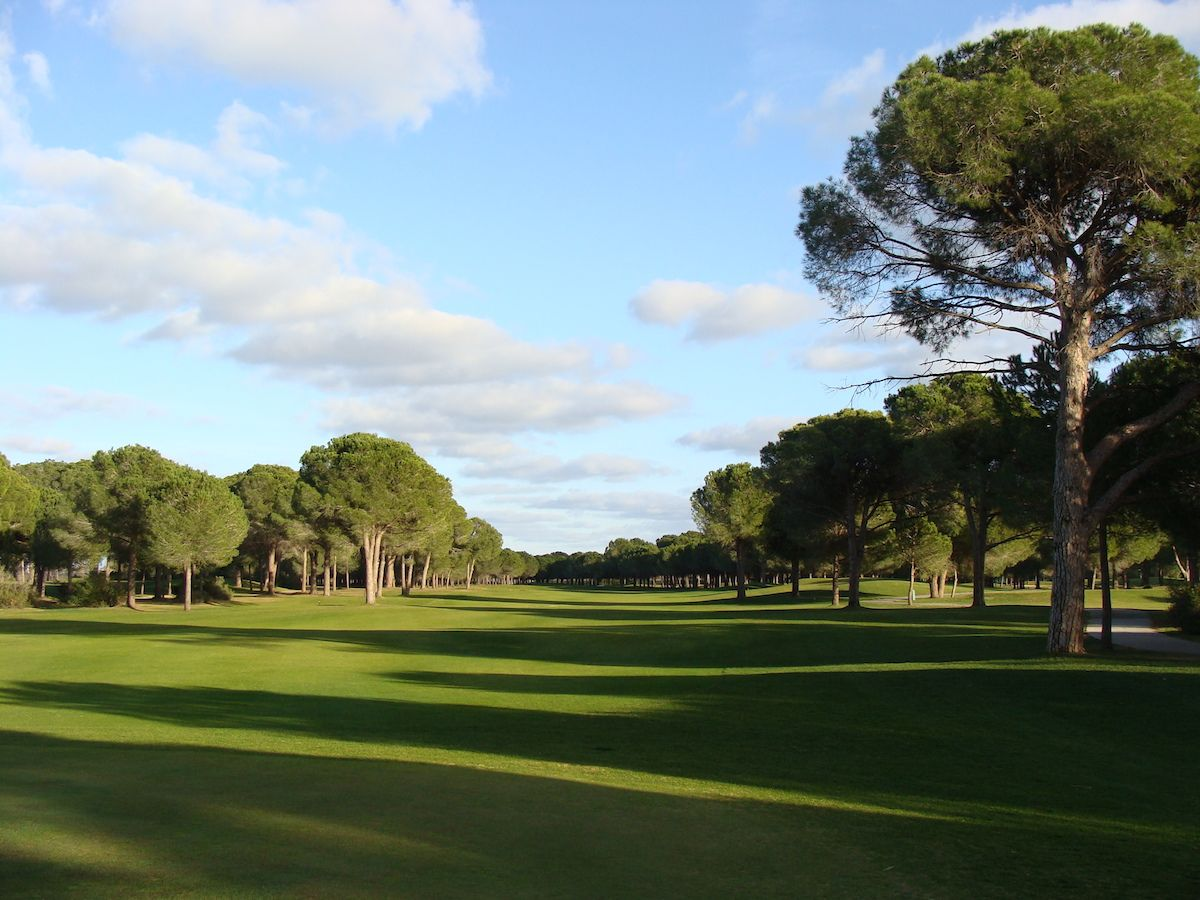 Robinson Golf Club Nobilis