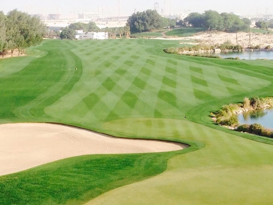 Doha Golf Club - Championship Course