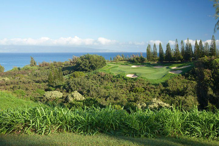 Kapalua Plantation Golf