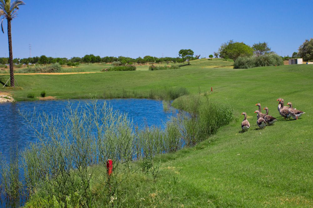 Villa Nueva Golf Course