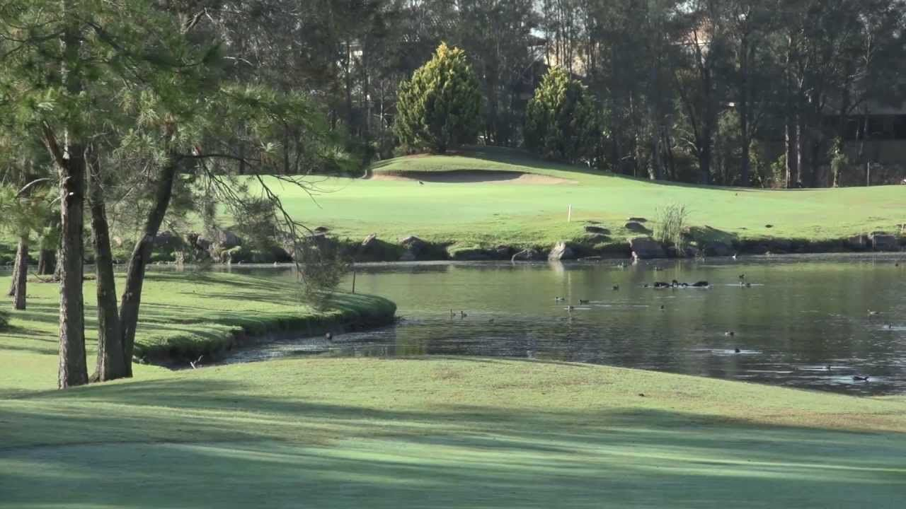 The Sanctuary Cove - Pines Course
