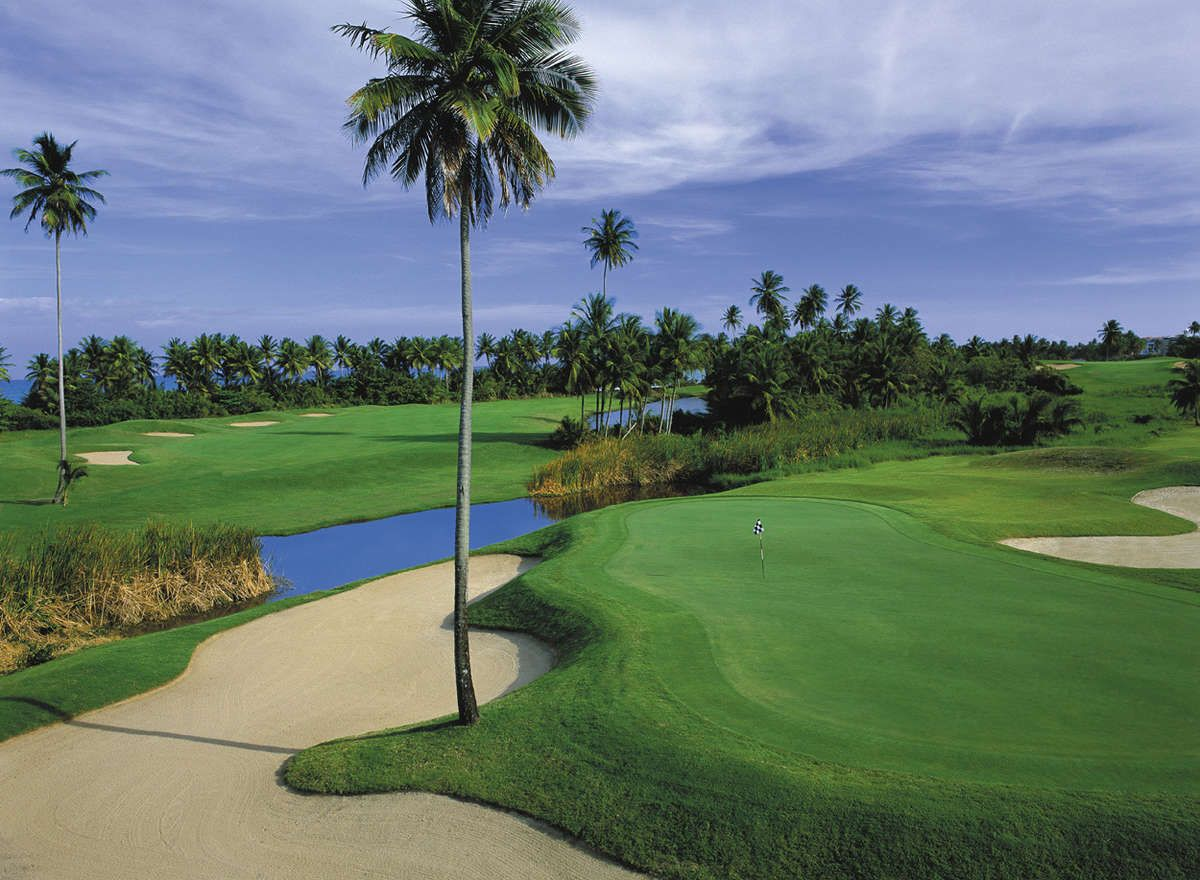 Palmas Del Mar Country Club - Palm Course