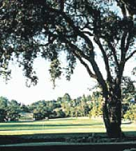 Healdsburg Golf Course