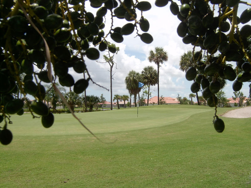 Grand Lacuna Golf Club
