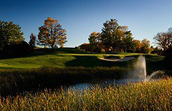 Crooked Tree Course