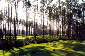 LPGA International - Hills Course