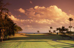 Dorado Beach Resort & Club - Sugarcane