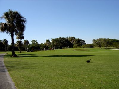 Carolina Golf Club