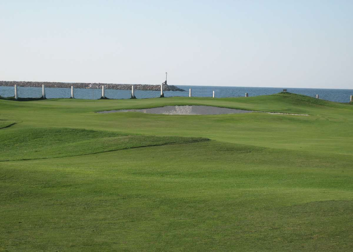 Palm Links Golf
