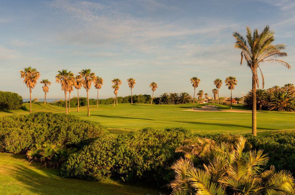 Costa Ballena Ocean Golf Club - Ficus/Olivos