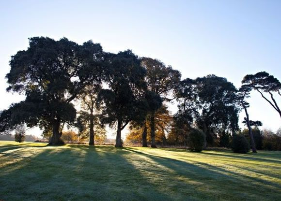 Deerpark Golf Course at Fota Island Resort