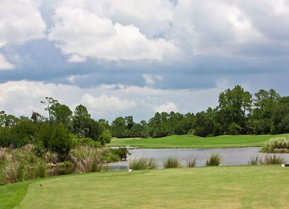 Heron Creek Golf - Marsh