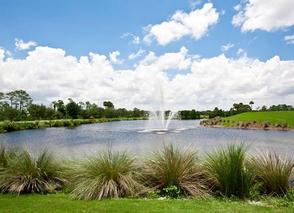 Heron Creek Golf - Creek