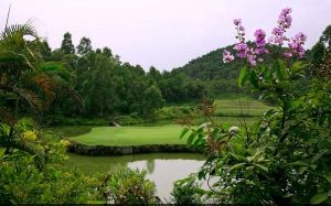Silver Ocean Golf - Green Fee - Tee Times