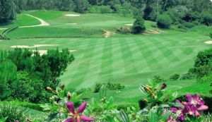 Zhaoqing Resort & Golf - Green Fee - Tee Times
