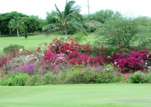 Coral Creek Golf - Green Fee - Tee Times