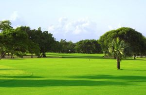Cocotal Golf Country Club - Green Fee - Tee Times