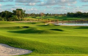 Punta Cana Golf Club - Green Fee - Tee Times