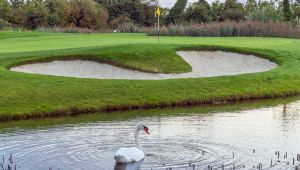 Malahide Golf Club - Green Fee - Tee Times