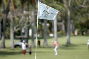 El Cid Golf & Country Club - Green Fee - Tee Times