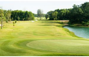 Amverton Cove Golf Island Resort - Green Fee - Tee Times