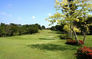 Palm Resort Golf Country Club - Green Fee - Tee Times