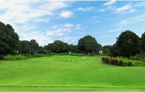 Orchard Golf Country Club - Green Fee - Tee Times