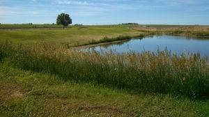 Wheatland Golf Club - Green Fee - Tee Times