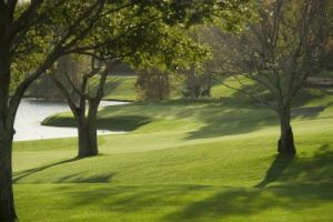 MetroWest Golf Club - Green Fee - Tee Times