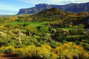 Gold Canyon Dinosaur Mountain - Green Fee - Tee Times