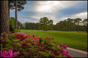 Beachwood Golf Club - Green Fee - Tee Times