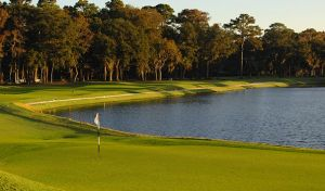 Sea Pines Resort - Heron Point By Pete Dye - Green Fee - Tee Times