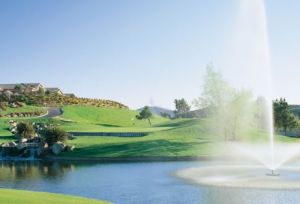 Twin Oaks Golf Course - Green Fee - Tee Times