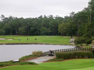 Ocean Ridge - Tigers Eye Golf Club - Green Fee - Tee Times