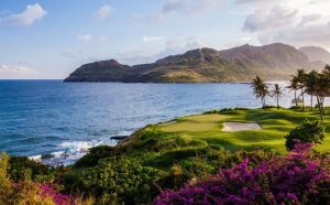 Kauai Lagoons Golf Club - Green Fee - Tee Times