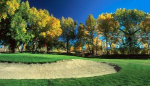 Carson Valley Golf Course - Green Fee - Tee Times
