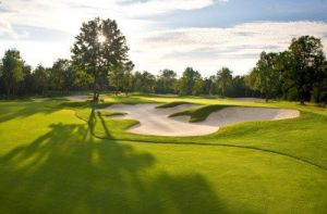 Forest Dunes Golf Club - Green Fee - Tee Times