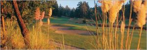 Fairwinds Golf Club - Green Fee - Tee Times