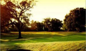 Brooker Creek Golf Club - Green Fee - Tee Times