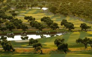 Arcos Gardens Golf Club & Country Estate - Green Fee - Tee Times