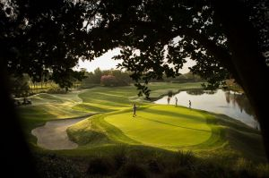 Grand Cypress: South-East 18 - Green Fee - Tee Times