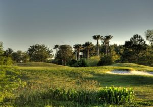 Tampa Bay Golf & Country Club - Green Fee - Tee Times
