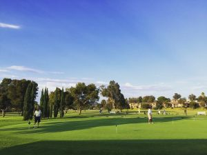 St. Marks Golf Course - Executive Course - Green Fee - Tee Times
