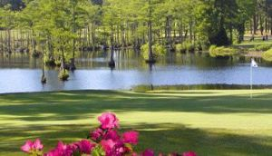 Cypress Lakes Golf Course - Green Fee - Tee Times