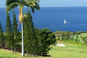Kona Country Club - Mountain Course - Green Fee - Tee Times