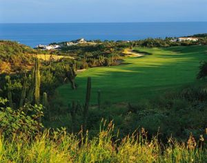 Palmilla Golf Club - Arroyo/Mountain - Green Fee - Tee Times