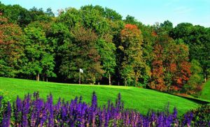 Beaver Brook Country Club - Green Fee - Tee Times
