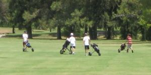 Davis Golf Course - Green Fee - Tee Times