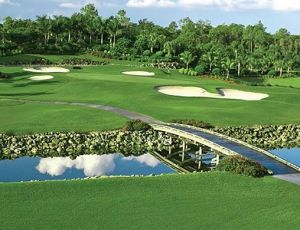 Lely Resort & Country Club - Flamingo Island - Green Fee - Tee Times
