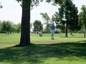Sun City South Golf Course - Green Fee - Tee Times